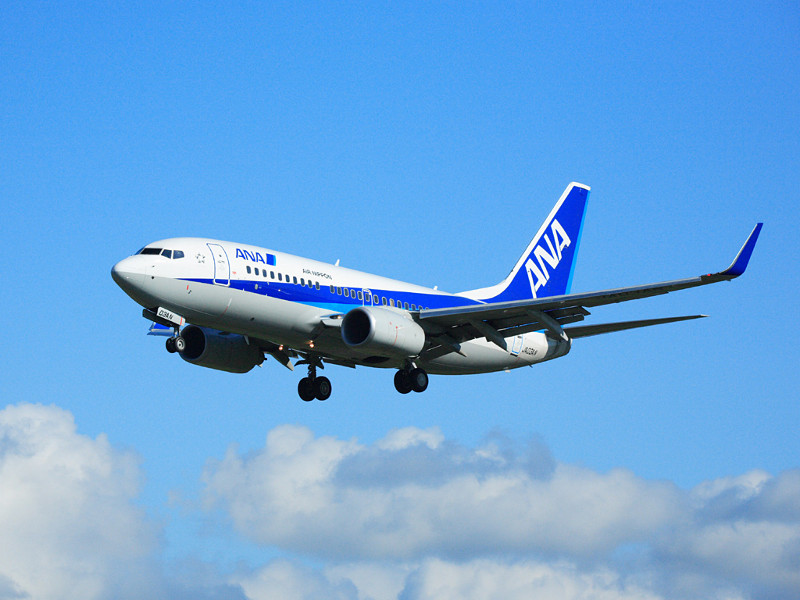 All Nippon Airways Boeing 737-700 with landing gear down (Credit: aircraft-wall.blogspot.com)